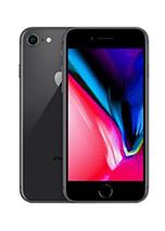 iPhone 7 \ 8